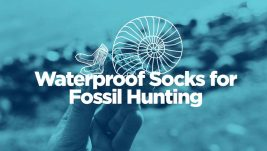waterproof-socks-for-fossil-hunting-3