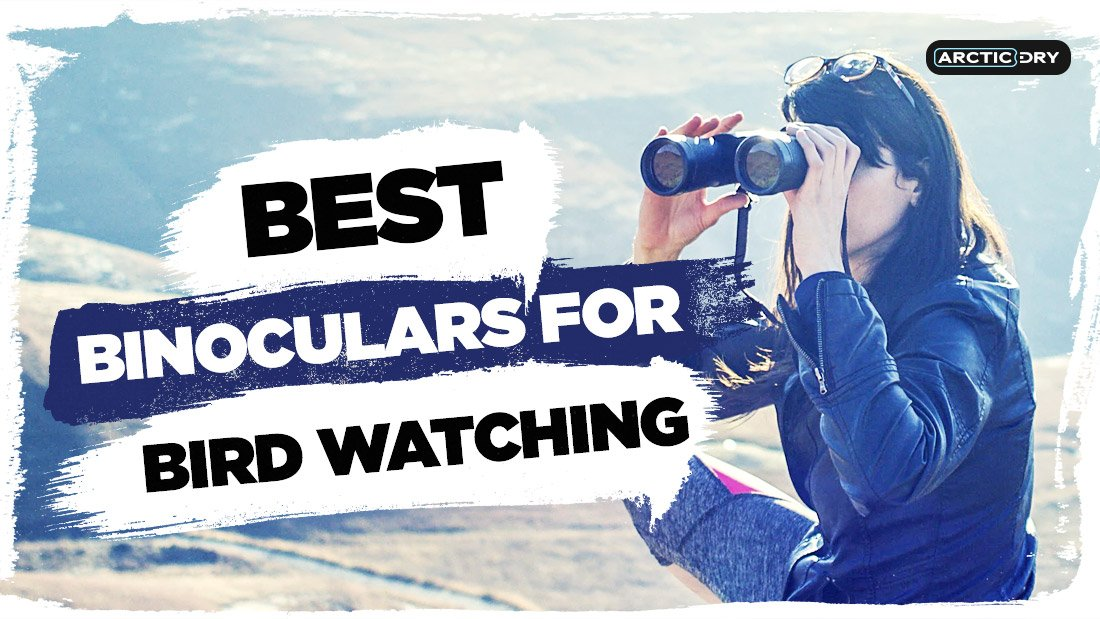 best-binoculars-for-bird-watching-uk
