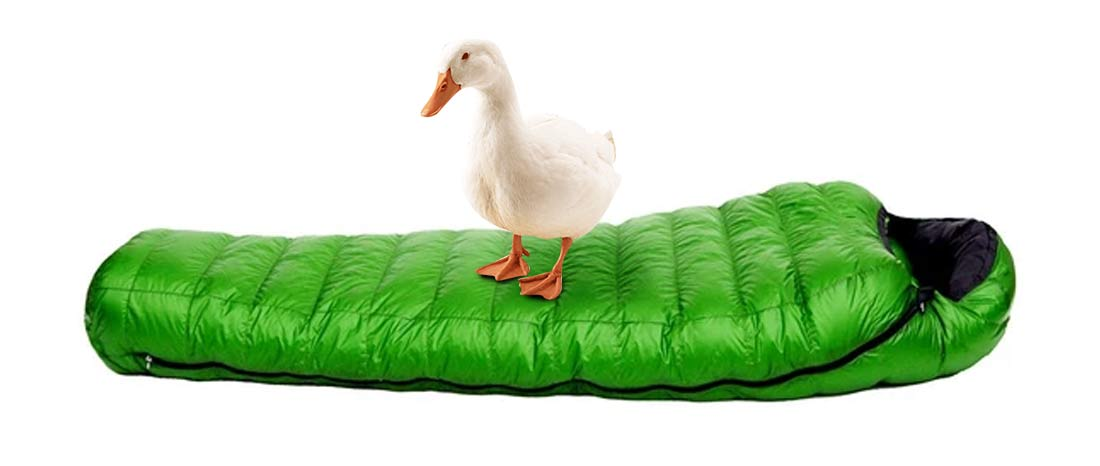 down-filled-sleeping-bag